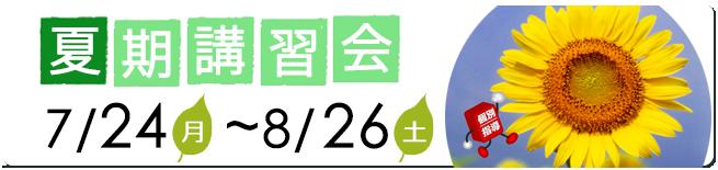 2017subn